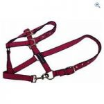 Cottage Craft Galaxy Headcollar – Size: FULL – Colour: Pink
